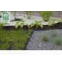 Plastikinis vejos bortas, juodas 7,8 x 100 cm